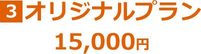 オリジナルプラン 15,000円